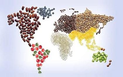 всемирный день здорового питания 2017